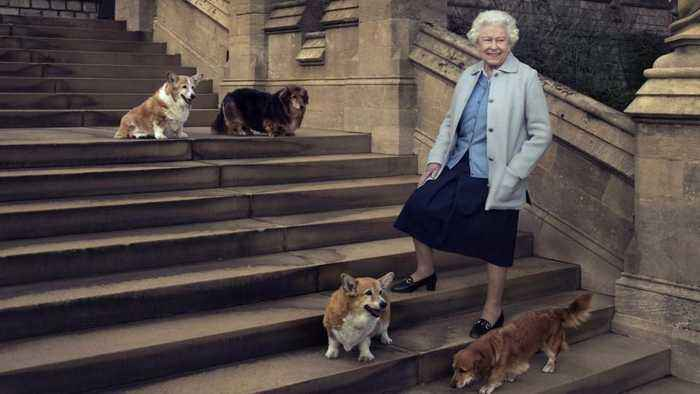 Super sad news out of Buckingham Palace today — The Queen's last royal  corgi has died