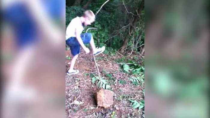 Tree Slingshot Backfires on Boys