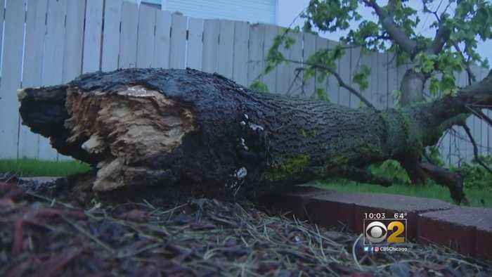 News video: Severe Weather Causes Damage Across Illinois Counties