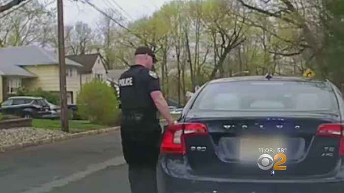 South Orange School Official Under Fire After Calling Police Chief 'Skinhead' During Traffic Stop