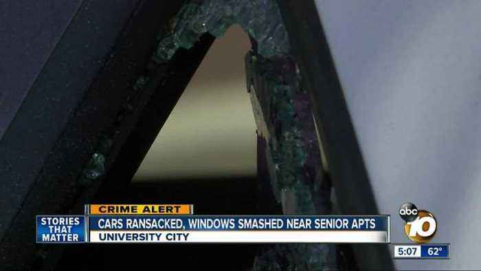 Cars ransacked, windows smashed near senior homes