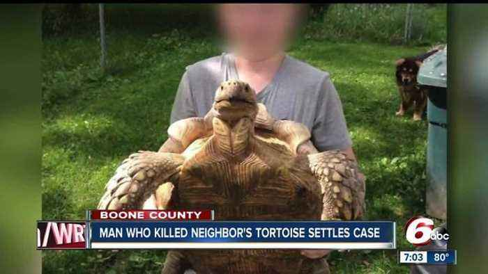 Man accused of killing pet tortoise settles for $1,400