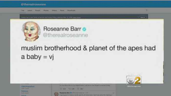 Chicago Professor Breaks Down Meaning Of Roseanne Barr's Racist Tweet