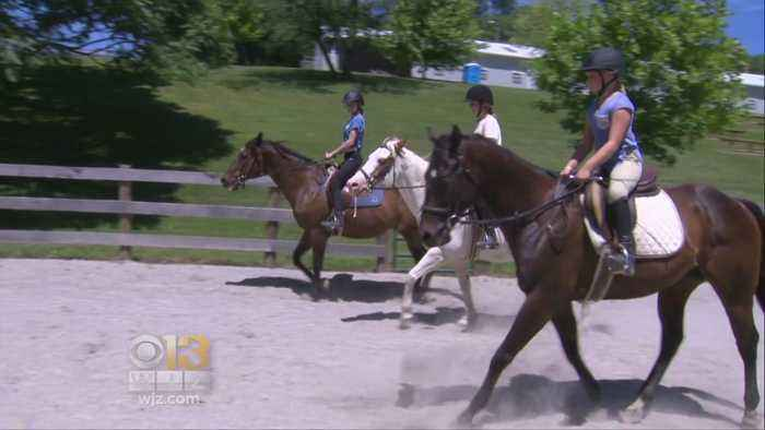 News video: Saddle Up: Md. Races Ahead As Leader In Caring For Horses
