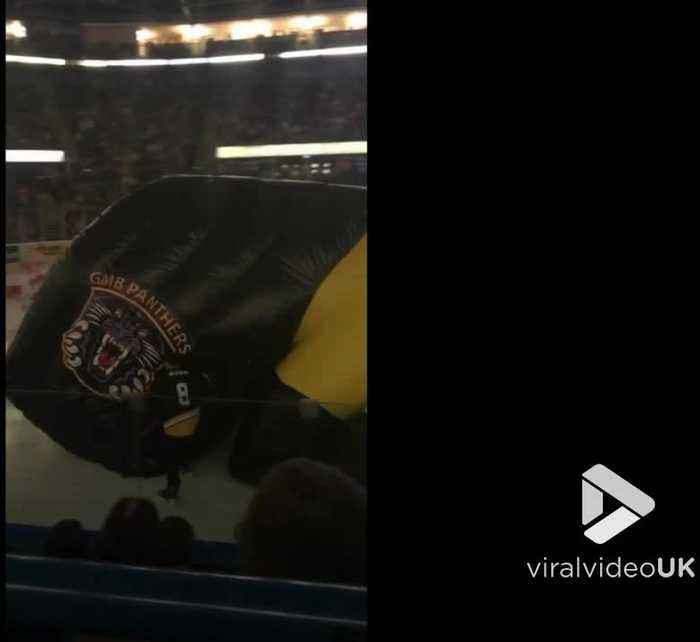 Giant inflatable panther entertains hockey crowd