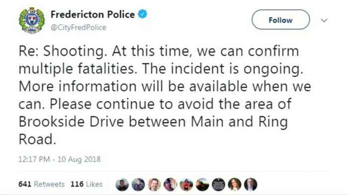 At least four people killed and one arrested in Canada shooting - police