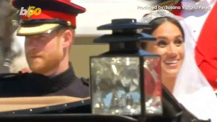 News video: Prince Harry and Meghan Markle Reportedly Have a New Addition to The Family