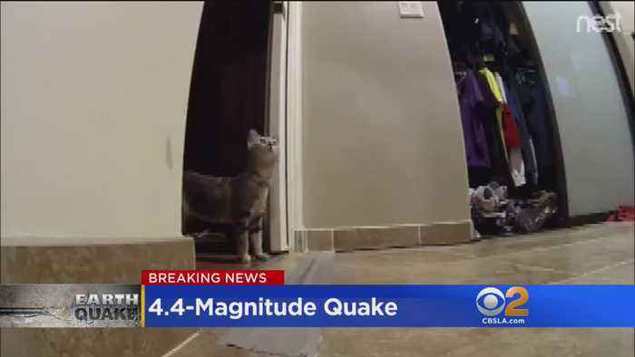 4.4-Magnitude Earthquake Hits Near La Verne