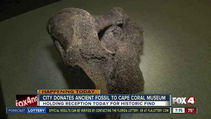 News video: City of Cape Coral donates historic fossil