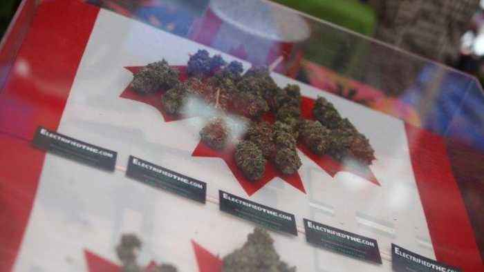 News video: Canadian Cannabis Users, Workers Could Face Lifetime US Ban