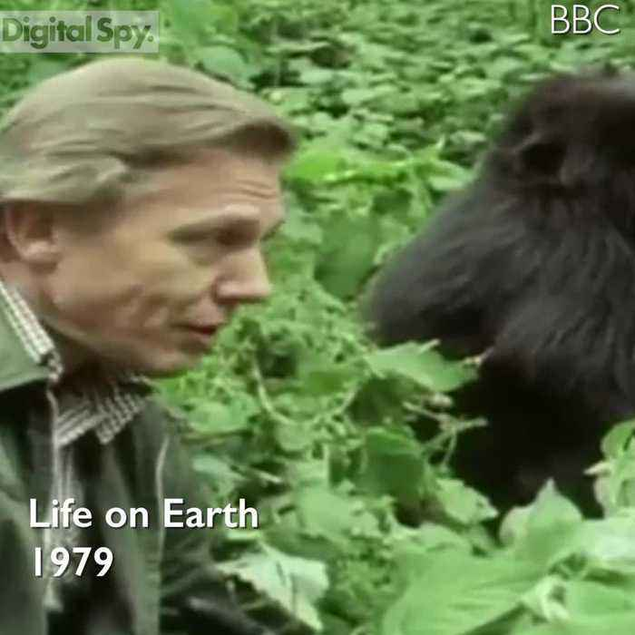 David Attenborough Transformation Timeline