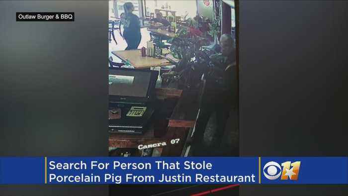 News video: Search For Perp That Pilfered Porcelain Pig
