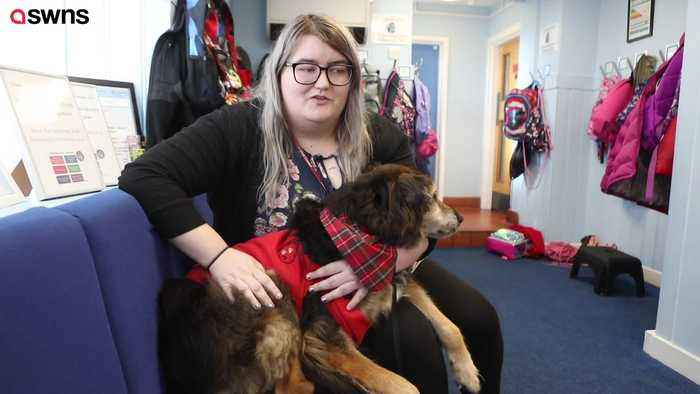 News video: Pooch helps primary school children learn to read