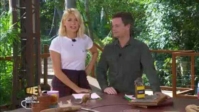 Declan Donnelly Cracks Jokes At Holly's Expense After 'I'm A Celeb' 'Entourage' Reports