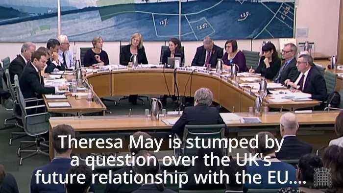 Theresa May is stumped by a question over the UK's future relationship with the EU