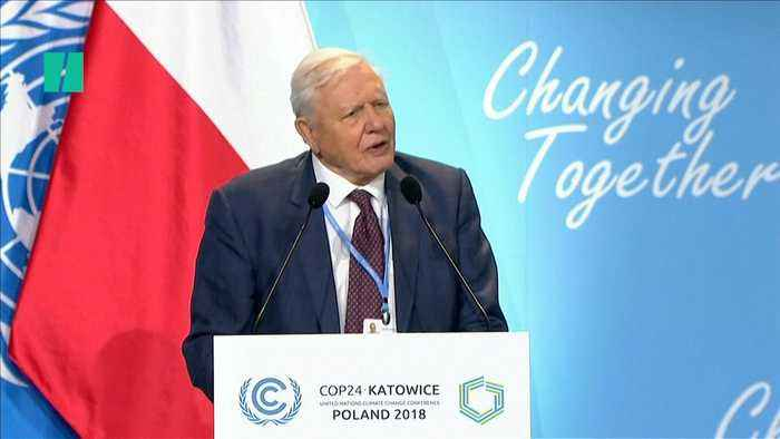 Sir David Attenborough Urges Leaders To Tackle Climate Change