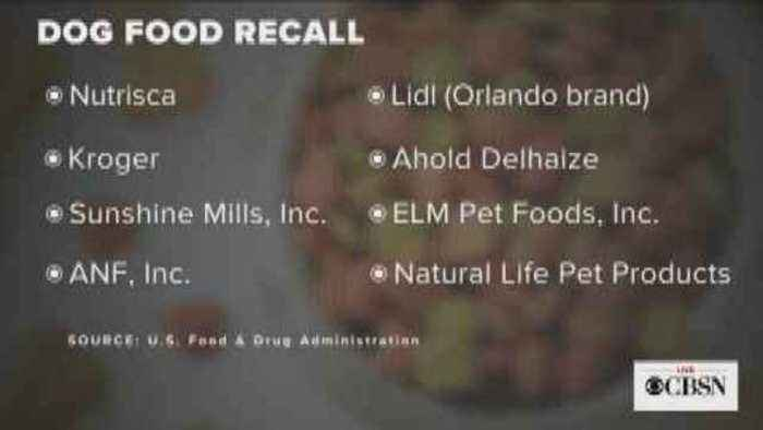 Moneywatch Fda Recalls Dog Food Brands Over One News Page Video