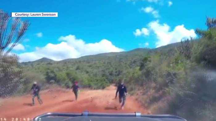 Video Captures Dramatic Moment Machete Wielders Rush Utah Couple`s SUV in Kenya