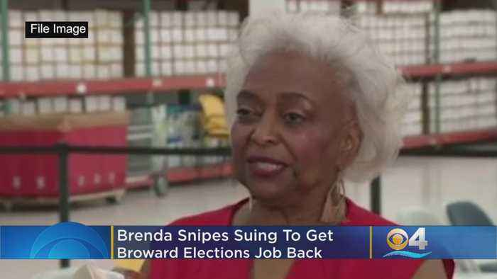 Snipes Sues To Get Broward Elections Job Back