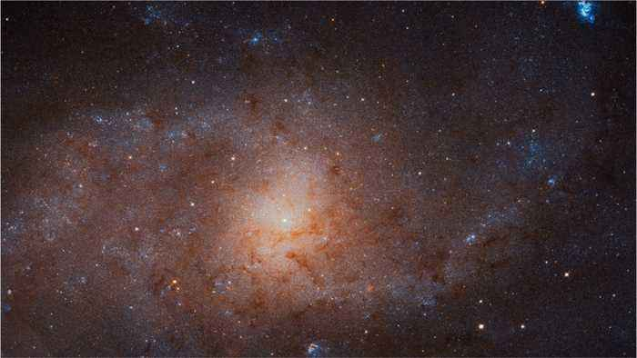 Hubble Space Telescope Captures Awesome View of Neighboring Galaxy