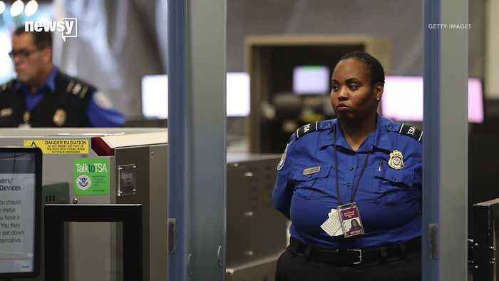 Government Shutdown Leading Some TSA Agents to Call in Sick