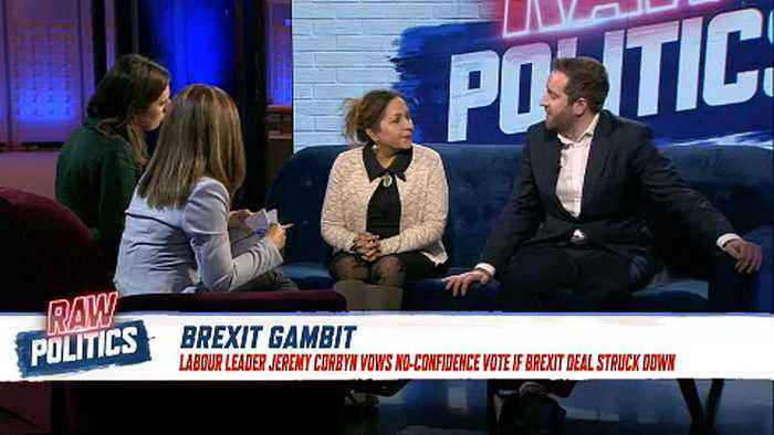 Labour is pro-EU and wants to stay aligned with Brussels, MEP tells Euronews | Raw Politics
