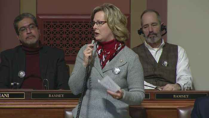Late Rep. Rukavina Honored By MN House Colleagues