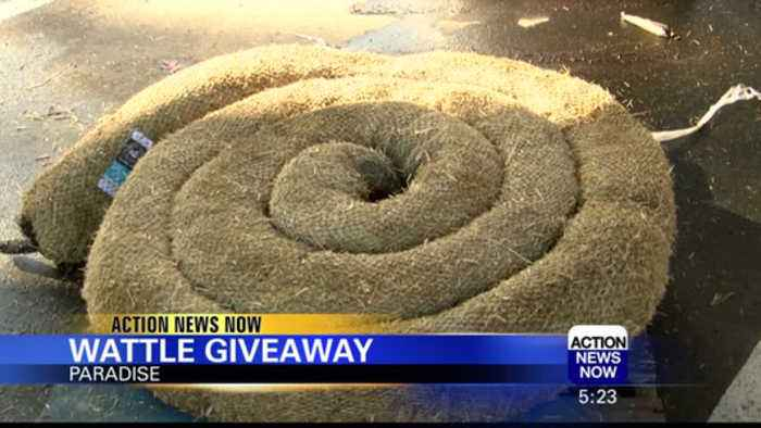 Wattle Giveaway in Paradise and Yankee Hill