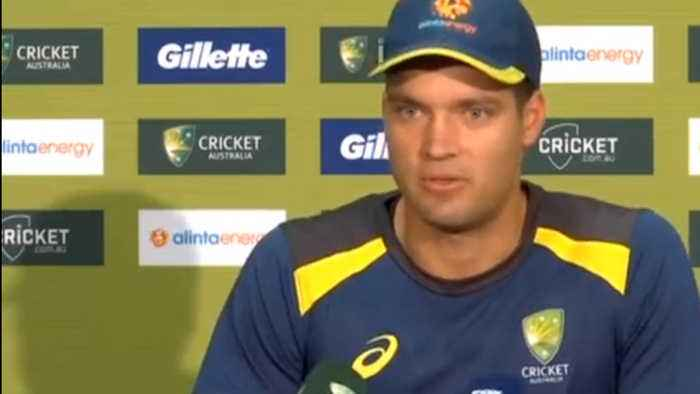 India Vs Australia: I am enjoying being the vice-captain of the team says Alex Carey | OneIndia News
