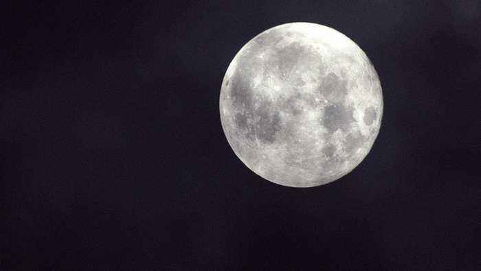 China Plants the First Seed on the Moon