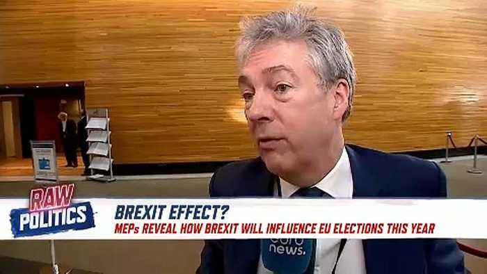 Raw Politics: MEPs discuss how Brexit will influence pending EU elections