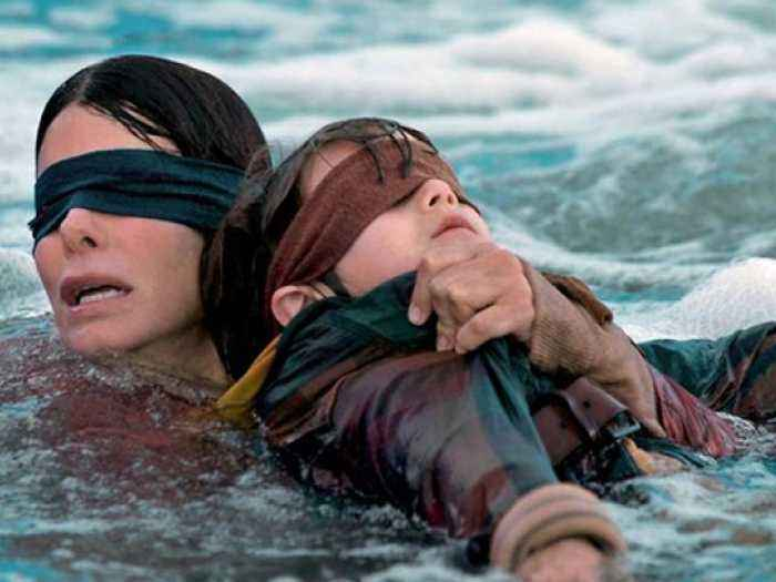 Bird Box: Video Review