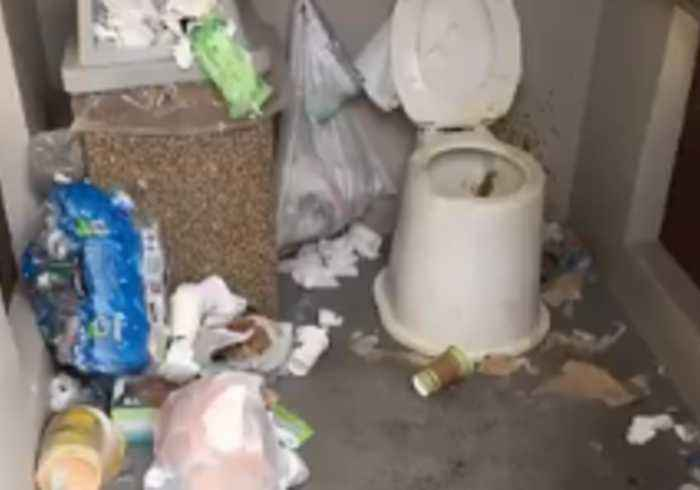 Unpaid Death Valley Park Rangers Spend Hours Cleaning Filthy Restroom