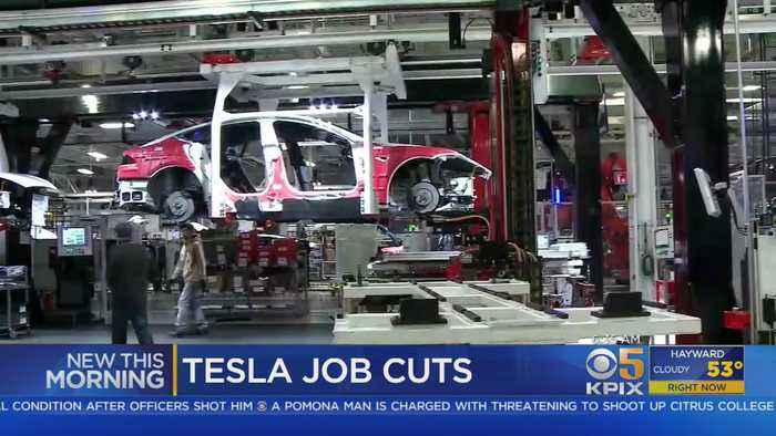 Tesla Announces Job Cuts In Attempt To Produce Lower-Priced Car
