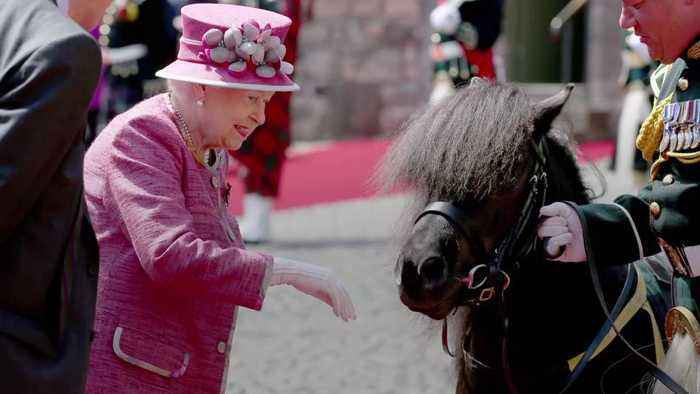 Watch Queen Elizabeth and Prince Harry with a Very Special, Very Prankish Shetland Pony