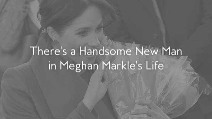 There's a Handsome New Man in Meghan Markle's Life