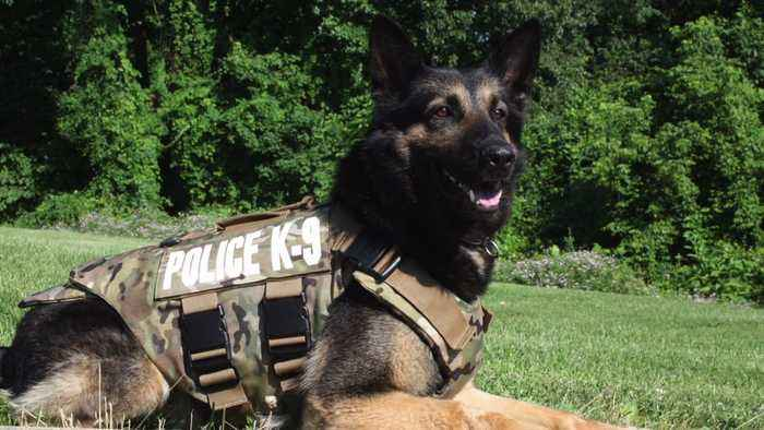 Pennsylvania Officers Say Final Goodbye to Beloved Police K-9