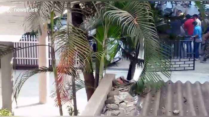 Leopard rampages through crowded Indian neighbourhood, injuring three
