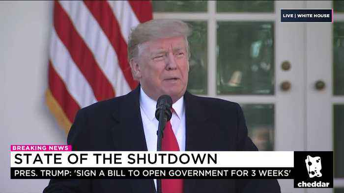 Trump Agrees to Deal to Reopen Government While Negotiations Continue