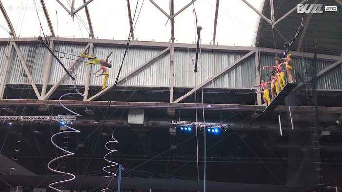 Trapeze artist plunge to ground during aerial show