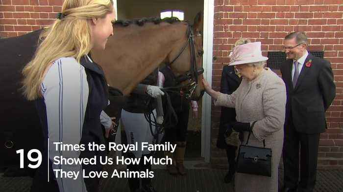 19 Times the royals showed us how much they love animals