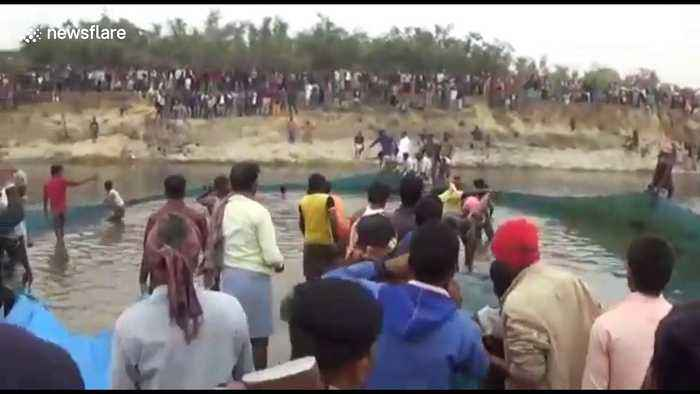 Indian villagers battle to save endangered dolphin stuck in irrigation canal