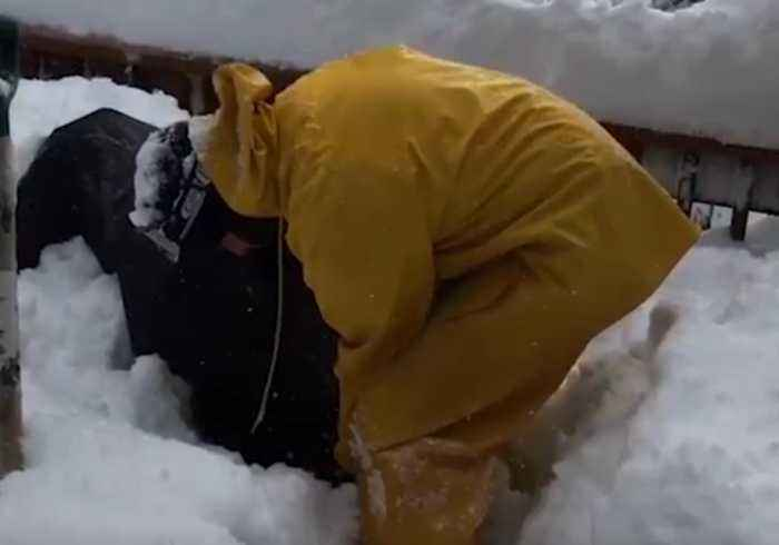 Man Has to Dig Out Snow Blower After Heavy Fall in California