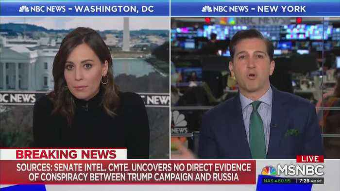 MSNBC panel skeptical of Senate Intel Committee report of no collusion