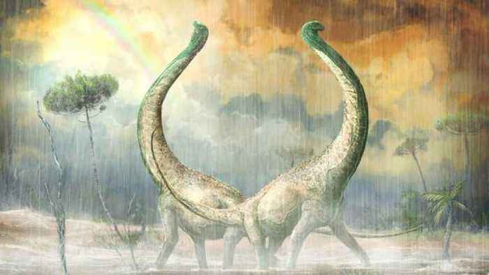 Newly Discovered Dinosaur Had A Heart-Shaped Tail