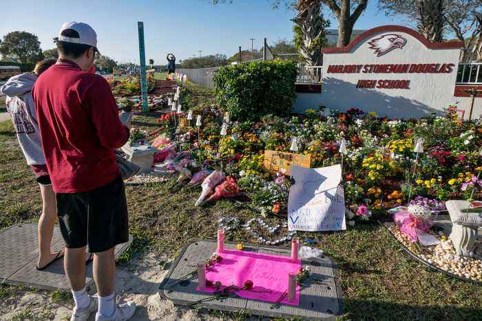 A Year After Parkland, Democrats and Activists Celebrate Long-Awaited Gun Reform Progress