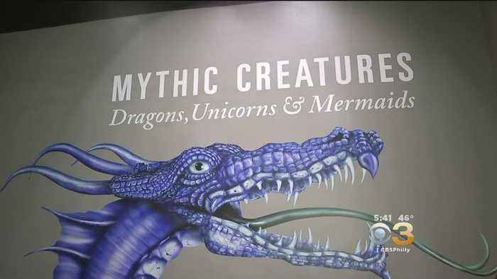 'Mythic Creatures: Dragons, Unicorns And Mermaids' Exhibit Coming To Academy Of Natural Sciences
