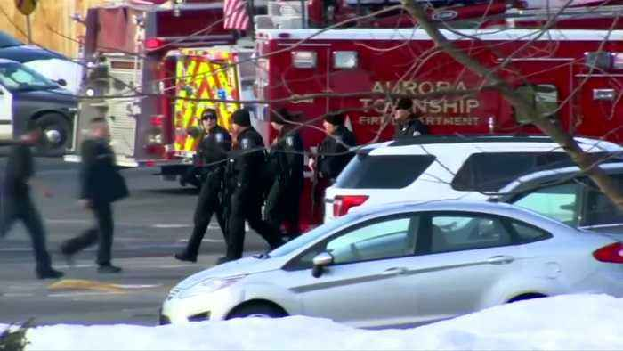 Dismissed employee kills five in Illinois shooting