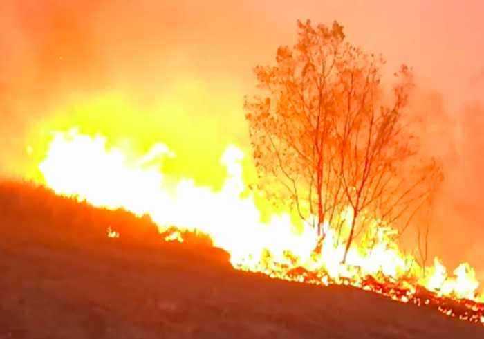 Firefighters Battle to Save Home From Bushfire Near Tabulam