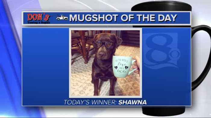 Mug shot of the day - 2/19/19 - Shawna